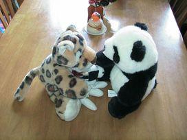 Panda_tiger