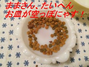 Img_40353_3